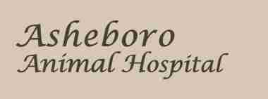 Asheboro Animal Hospital